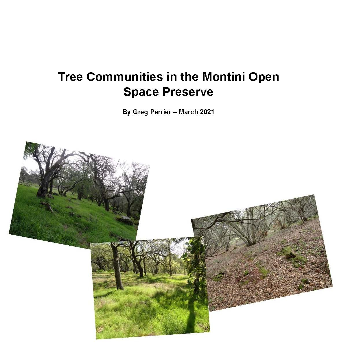 Tree Communities in the Montini Report with cover_Page_01